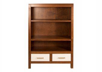 Ricki_bookcase